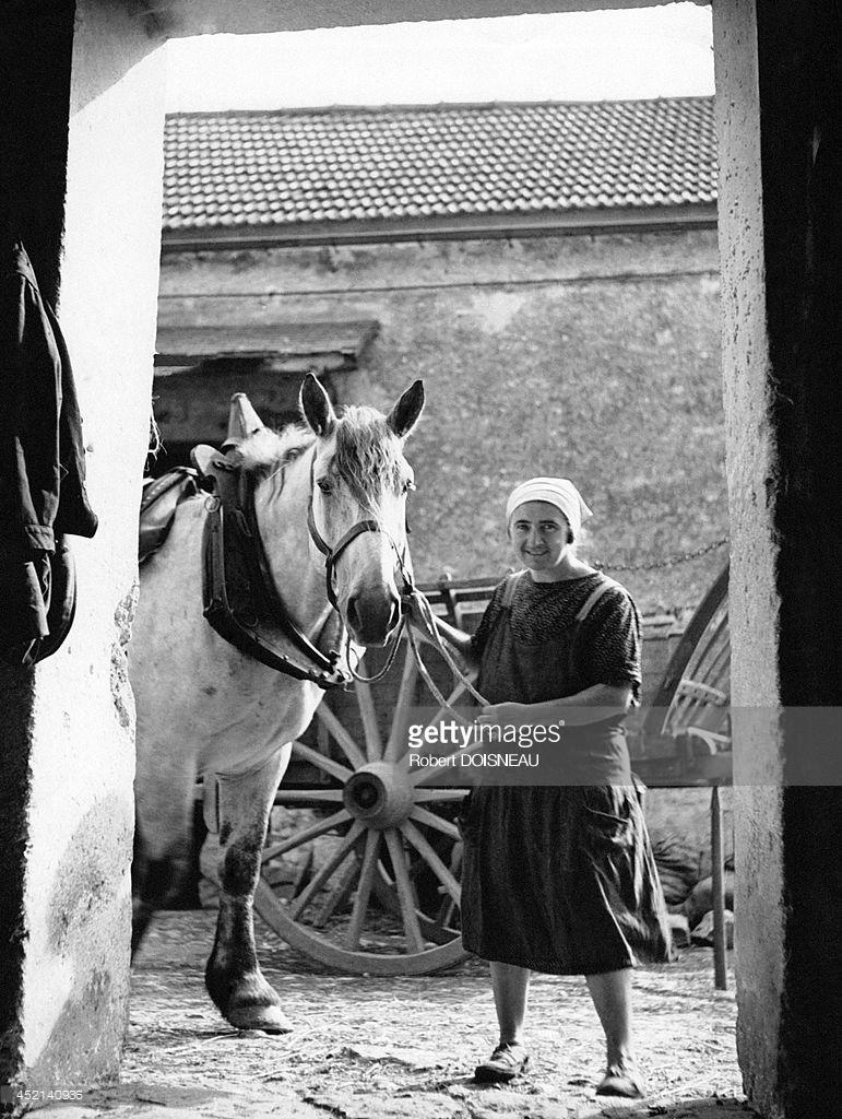 Фермерша, держащая лошадь за уздечку во дворе фермы