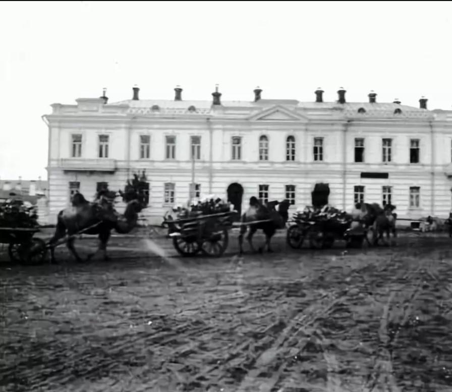 Караван верблюдов у Казенной палаты