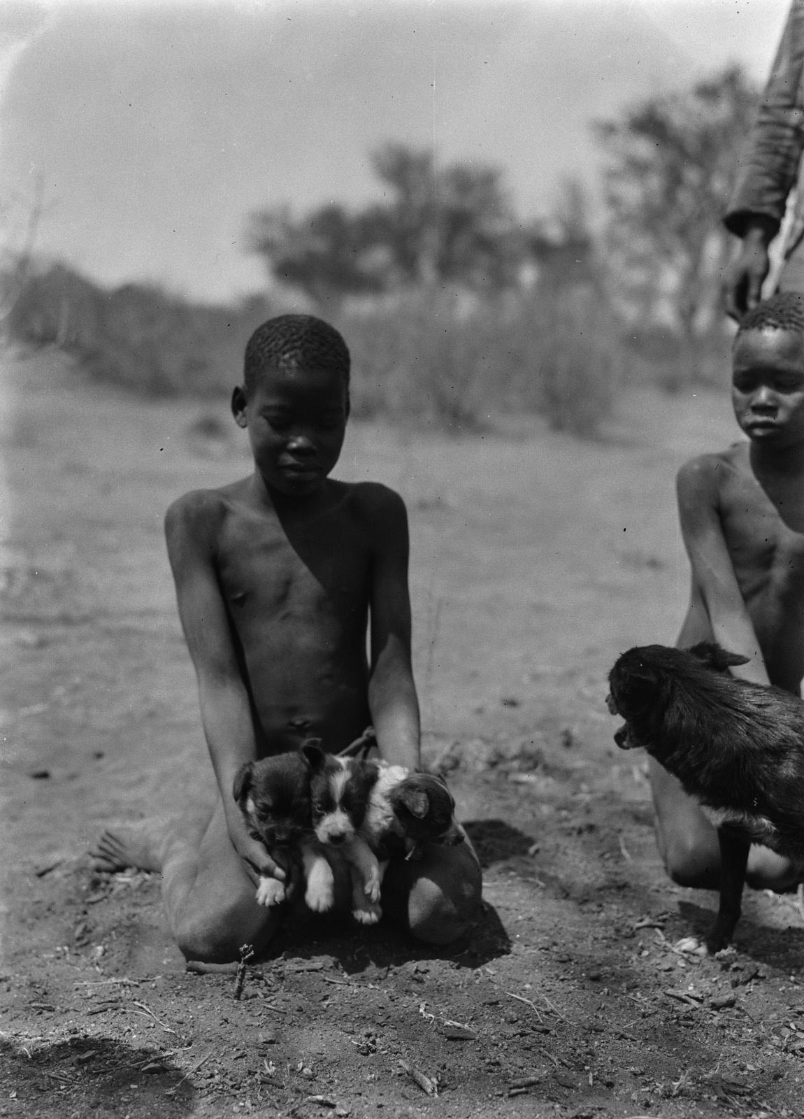 Бечуаналенд. Мальчик с щенком