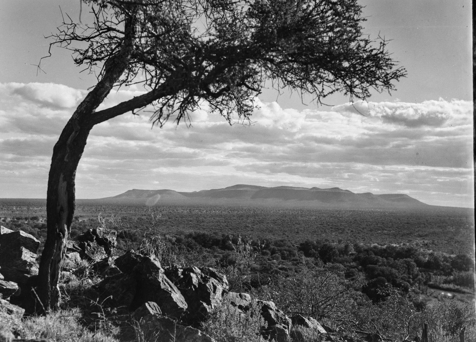 Бечуаналенд. Вид равнины на плато Салика