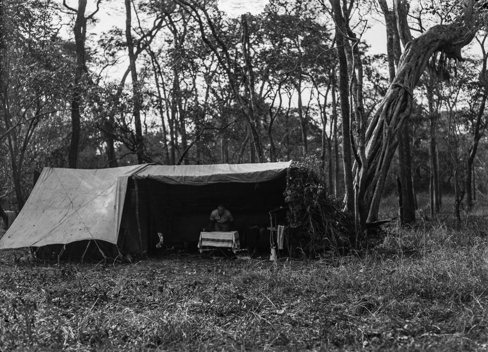 Касемпа. Палатка в лесу