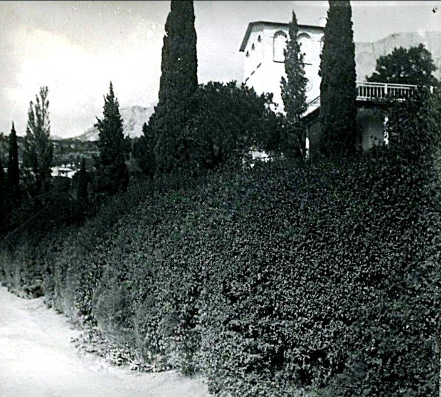 Алупка19