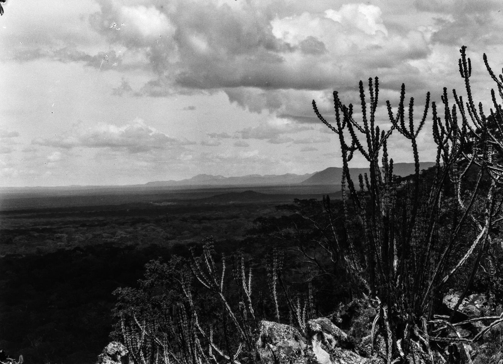 Капири-Мпоши.  Вид на холмистый пейзаж с горы Мампу, одной из самых высоких гор Северной Родезии