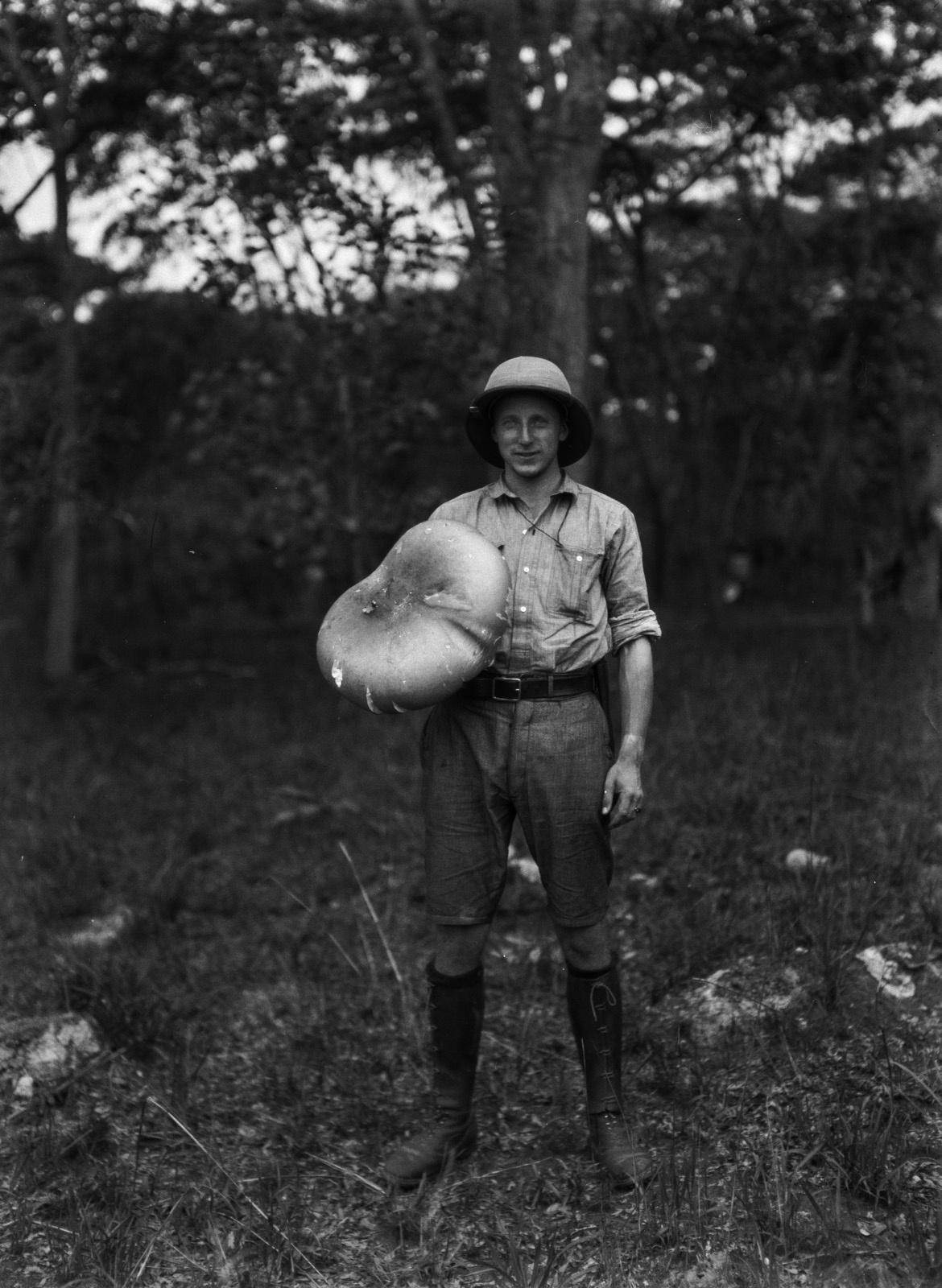 Н'Чанга. Геолог Эрнст Акерманн (1906-2003) с большим съедобным грибом
