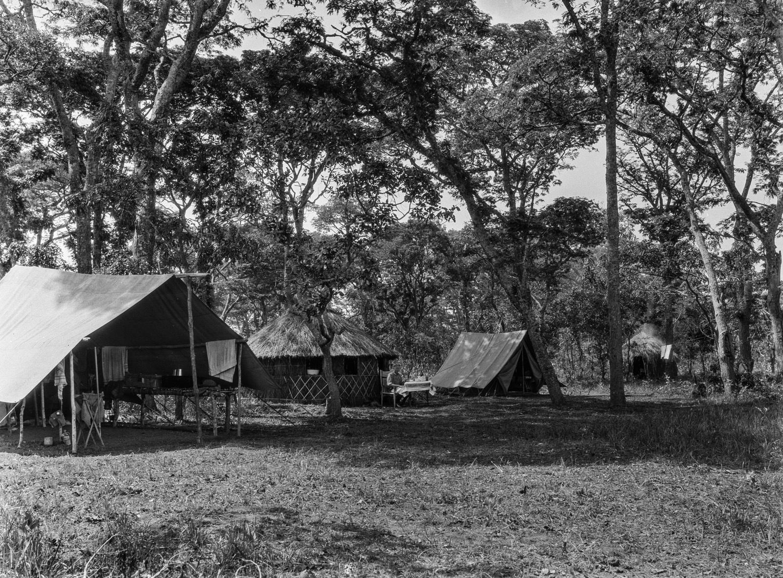 Н'Чанга. Лагерь изыскателей в лесу