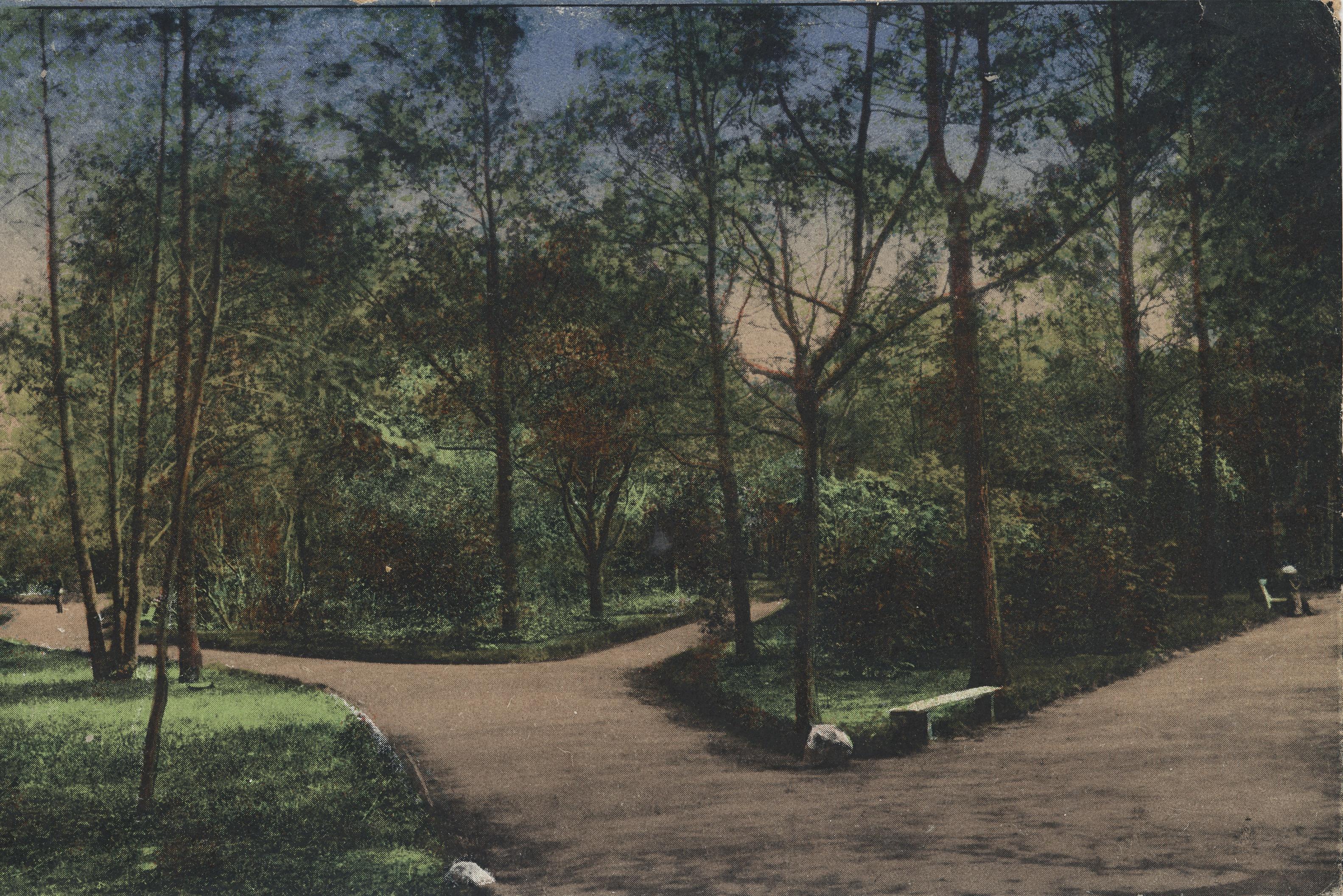Парк при курзале (1)
