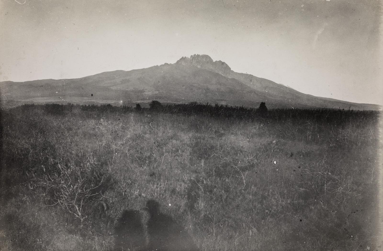 Пейзаж в окрестностях горы Килиманджаро