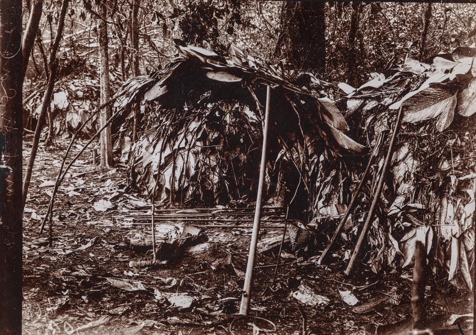 Хижина, покрытая большими листьями