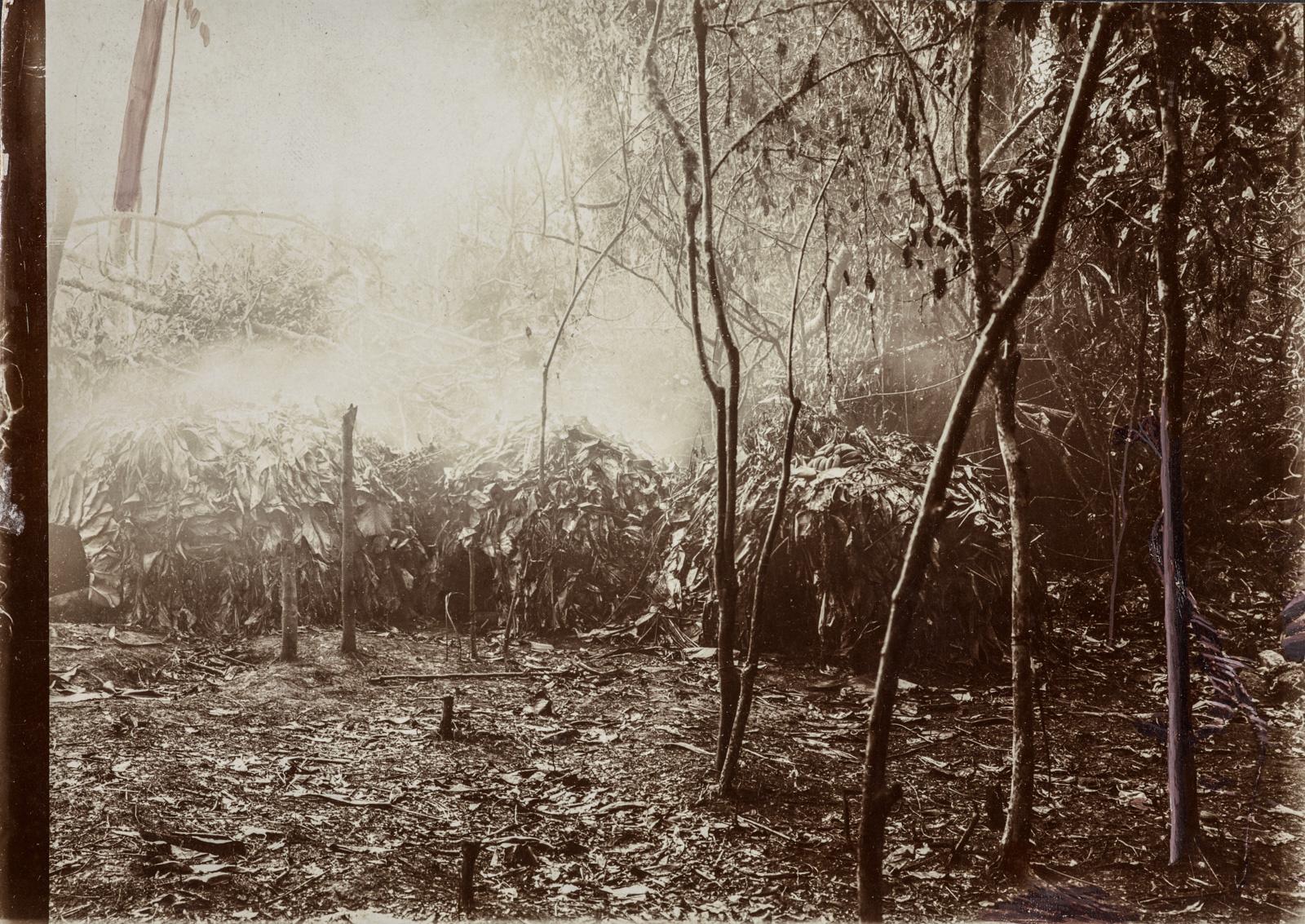 Хижины, покрытые большими листьями