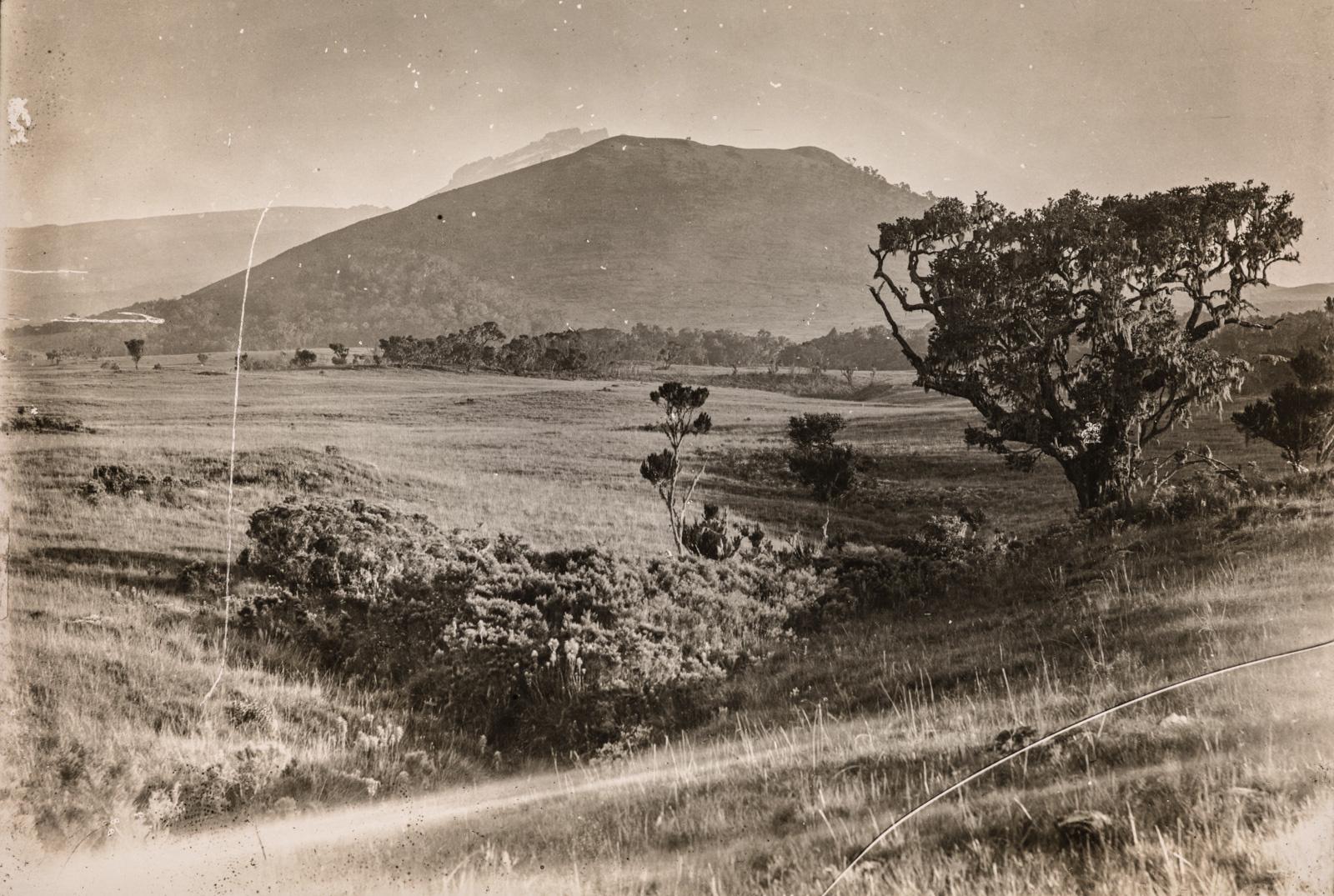 Холмистый пейзаж