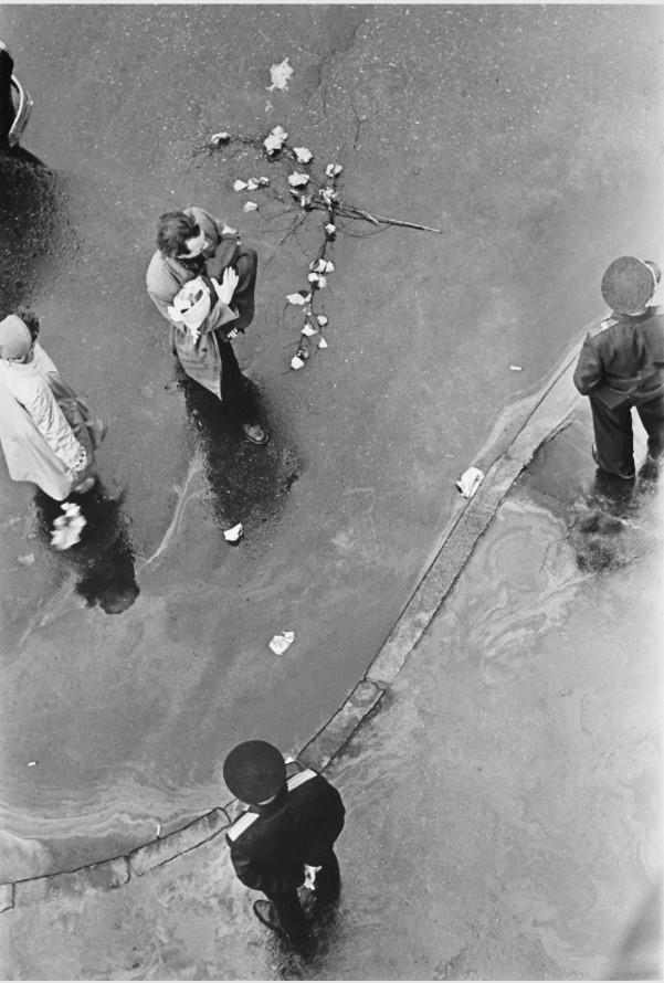 1957. Брошенные цветы