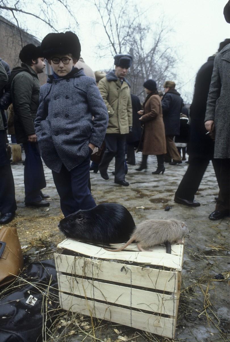 Walter Schmitz - Moskau 1982 (5)