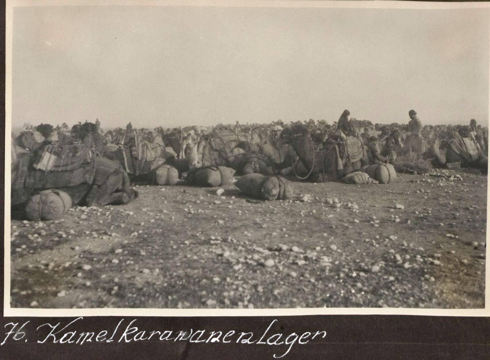 49. Курдистан
