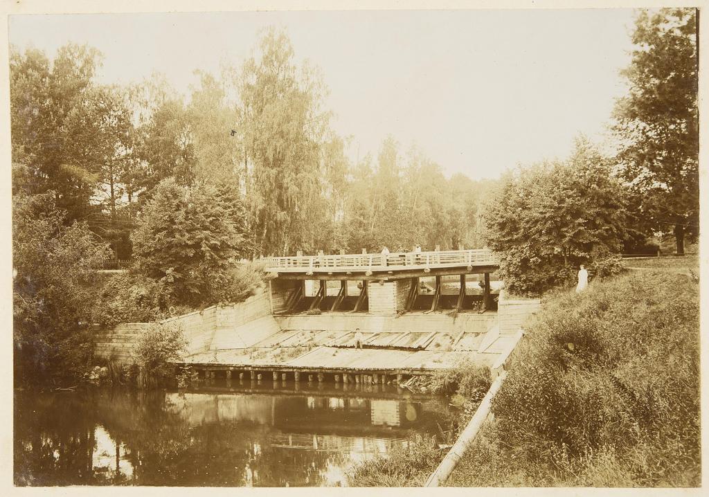 Плотина в парке