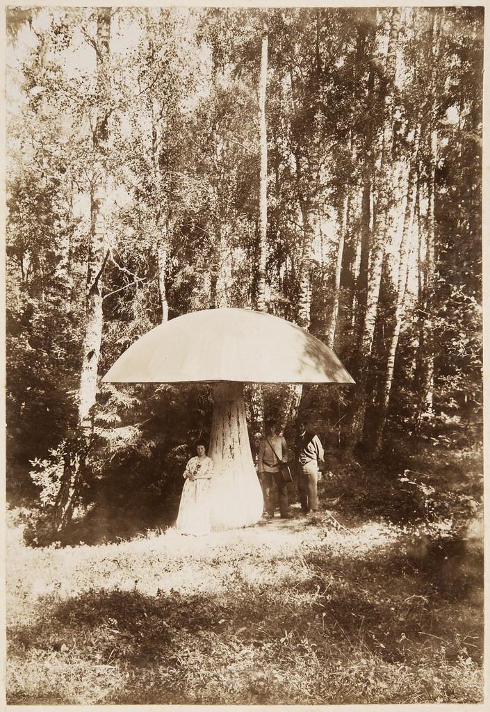 Беседка-«гриб»