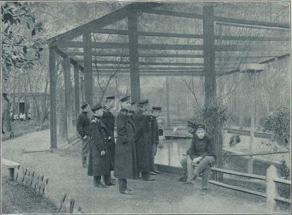 Воспитанники Московского коммерческого училища на экскурсии в Зоологическом саду. 1903