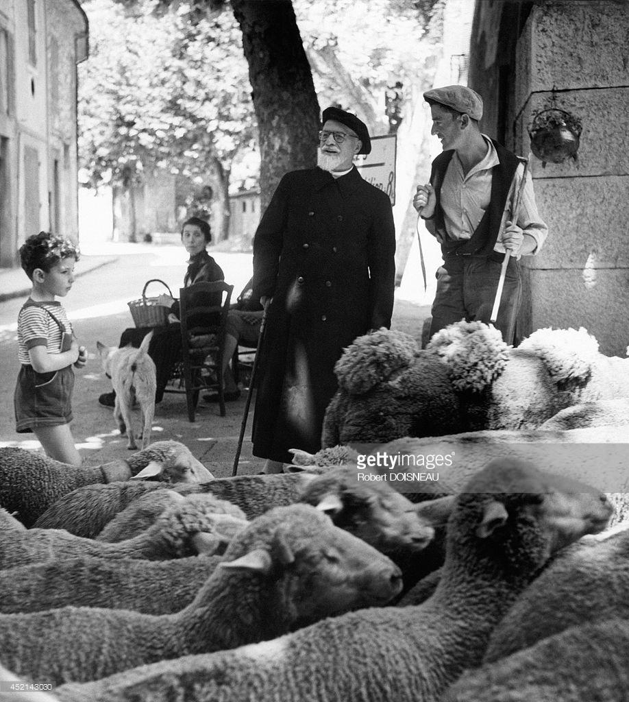 1958. Священник во время сезонного перегона скота на летние пастбища Баржемона