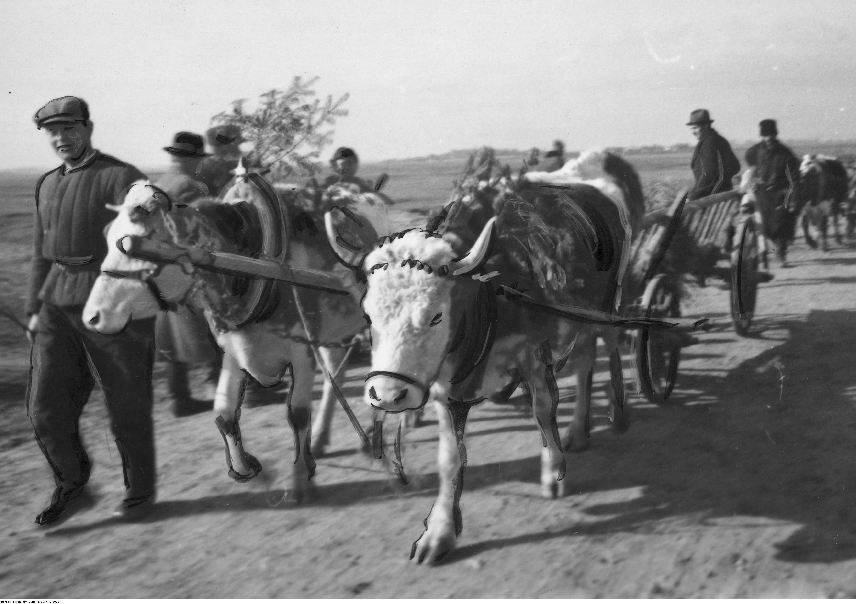 1943. Колонна украинских крестьян с телегами по пути на встречу с генерал-губернатором Гансом Франком. май