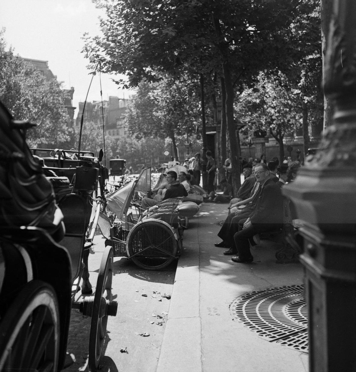 46. Велотакси