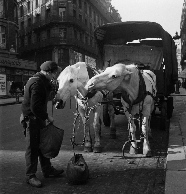 48. Парижский возница
