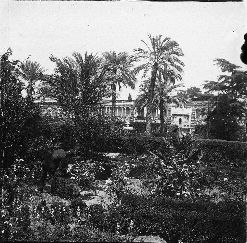 Севилья.  Сады Алькасара