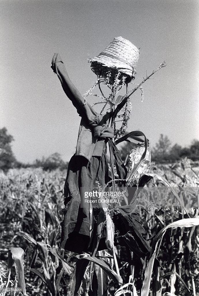 1964. Пугало на дороге в Кагор. Август