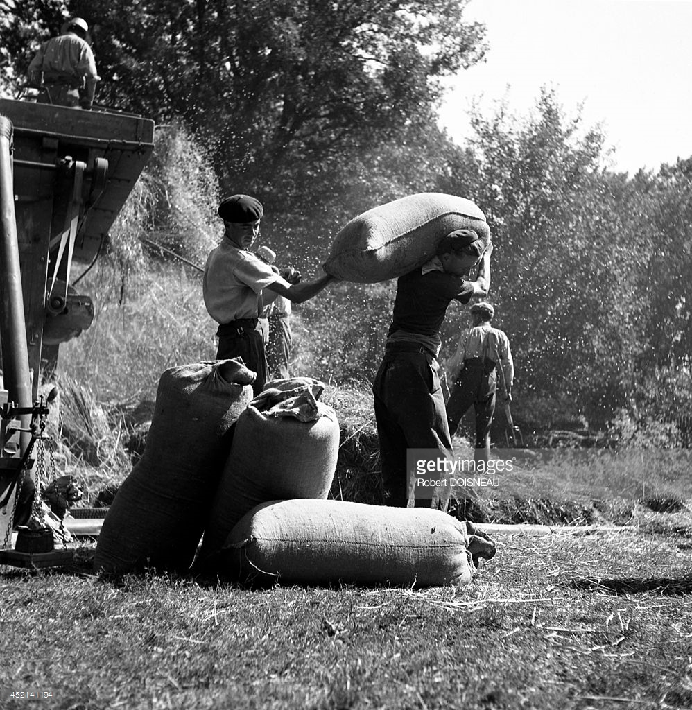 1943. Жатва  в Сен-Соване.jpg