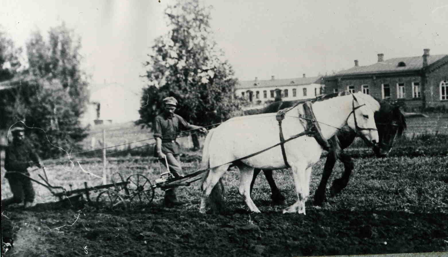 Сибирская машиноиспытательная станция Министерства земледелия. 1911.jpg