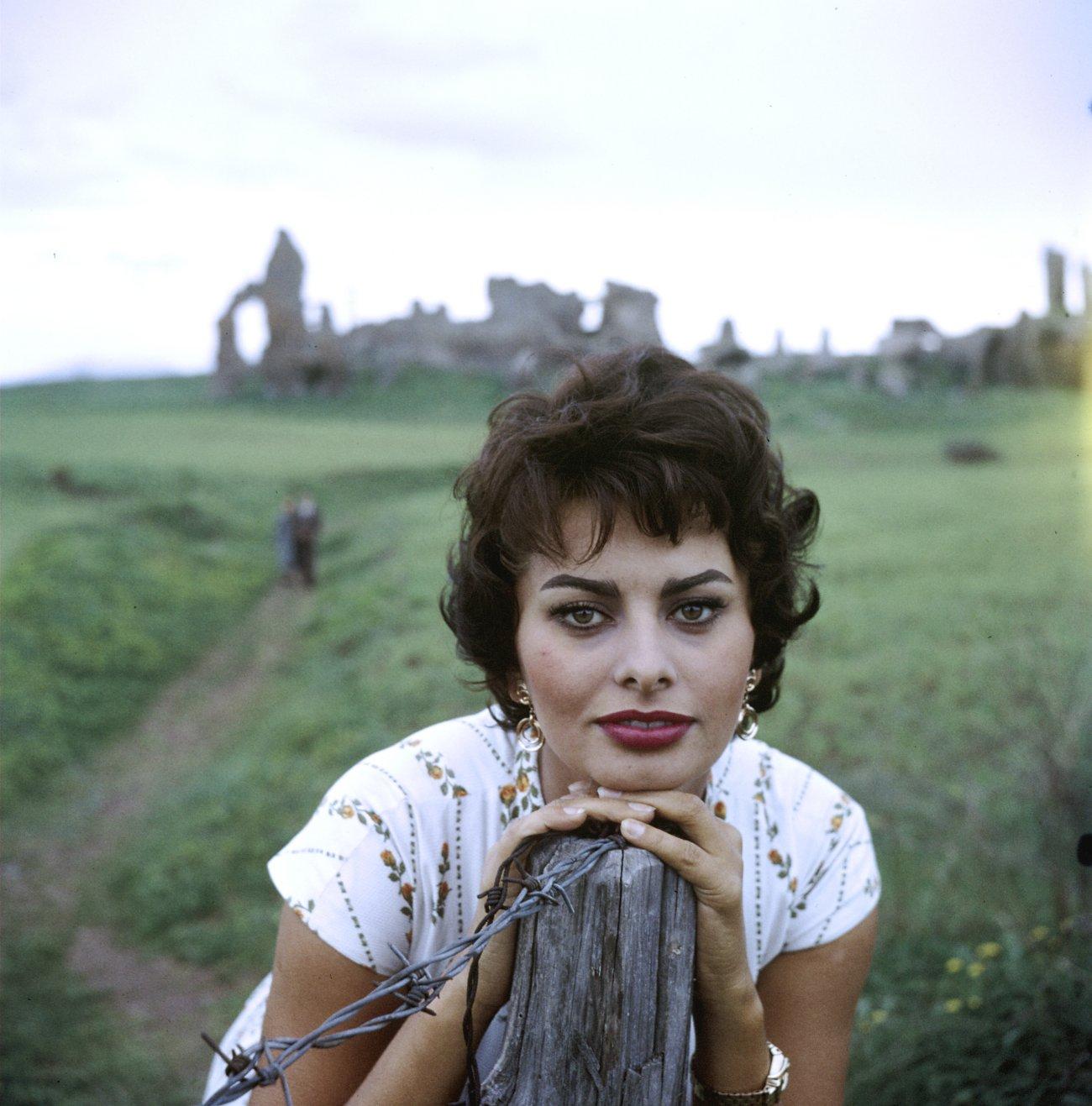 Sophia Loren28.jpg