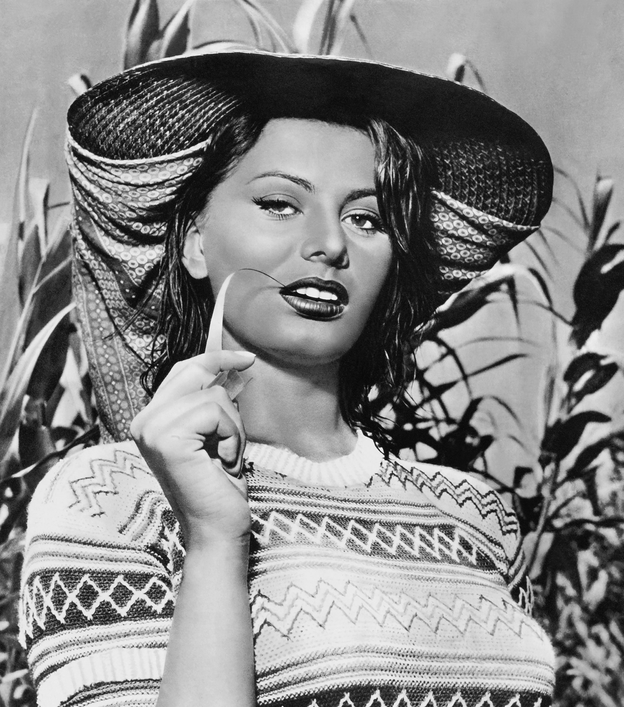 Sophia Loren202.jpg