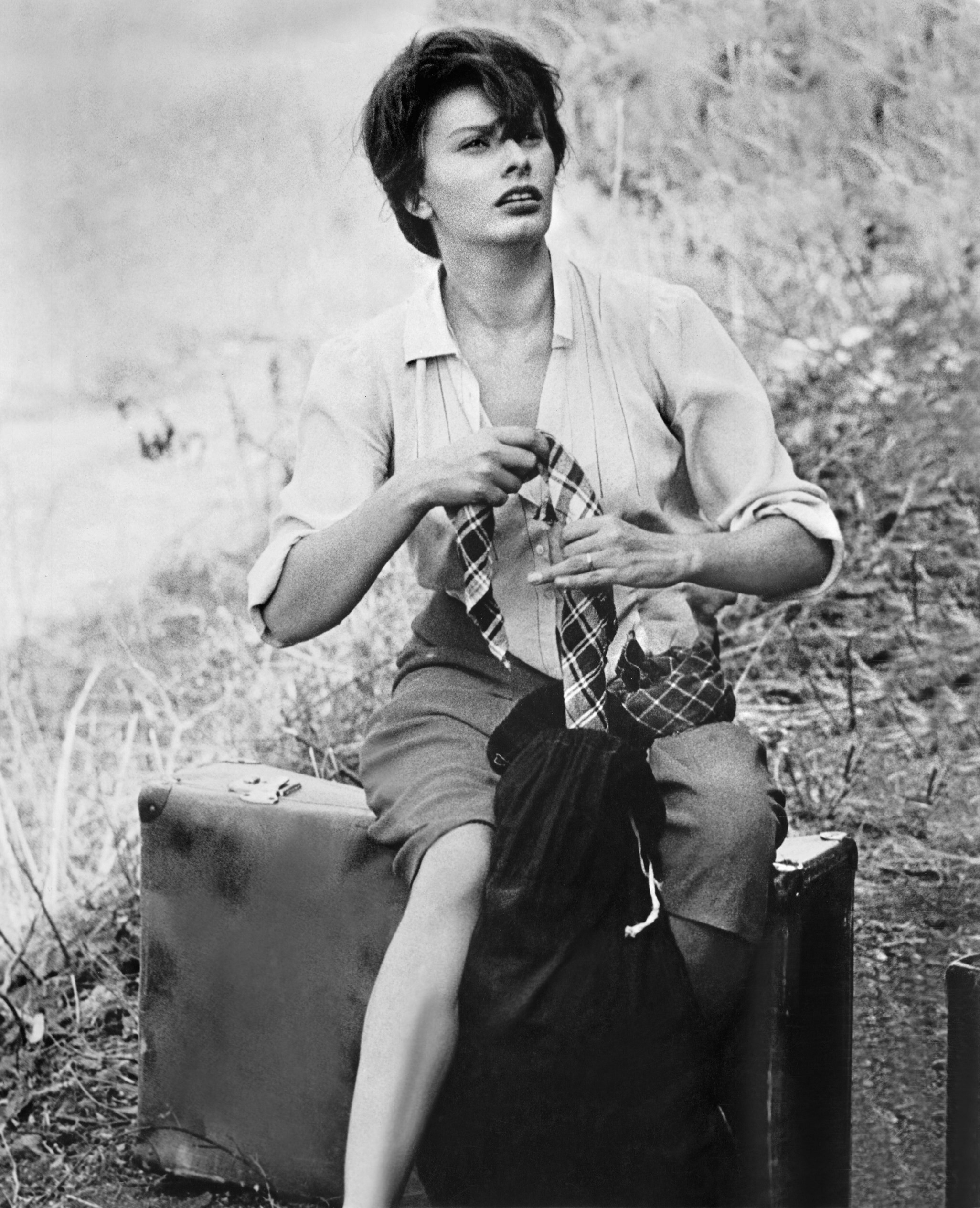 Sophia Loren243.jpg