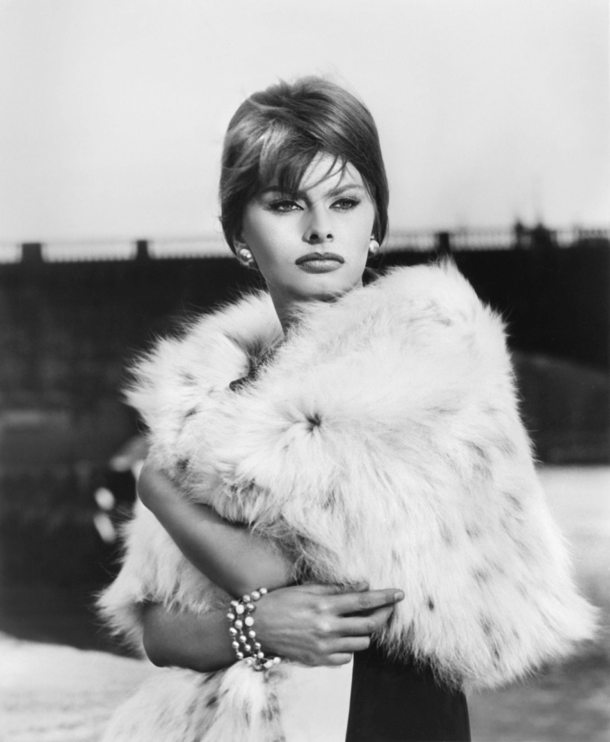 Sophia Loren269.jpg