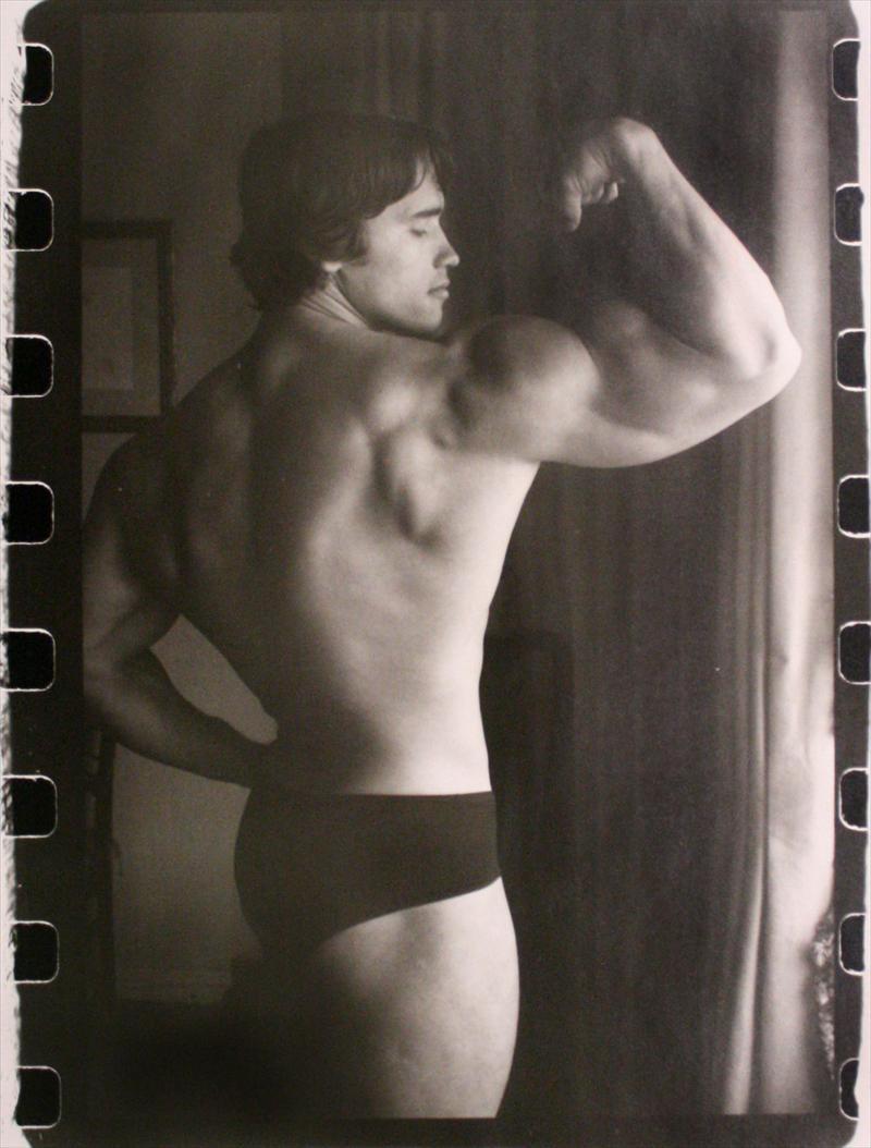 Arnold Schwarzenegger 02.jpg