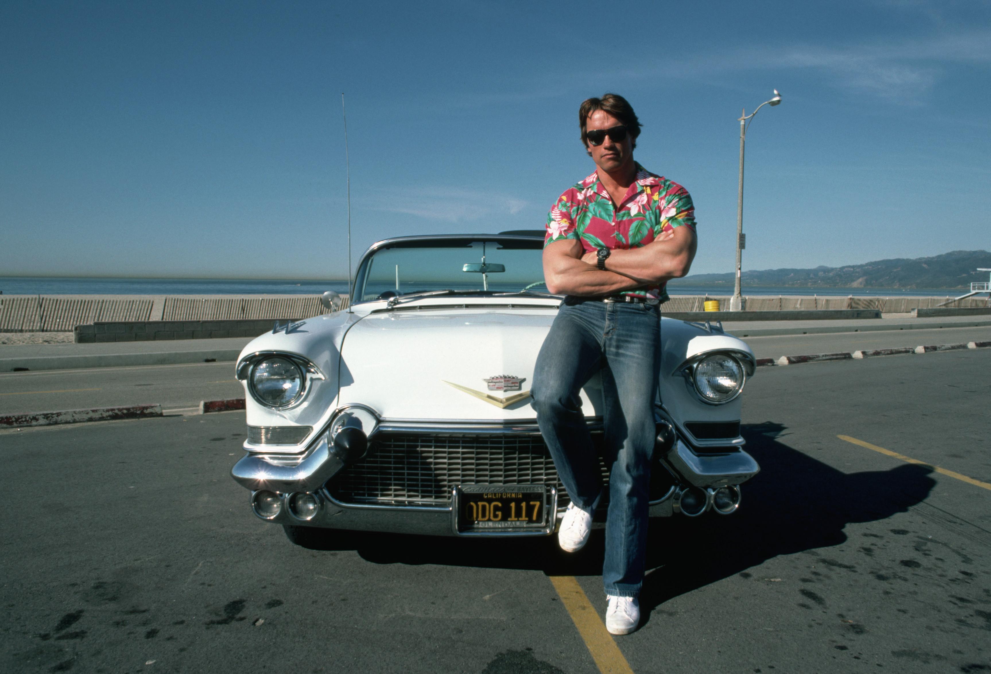 Arnold Schwarzenegger08.jpg