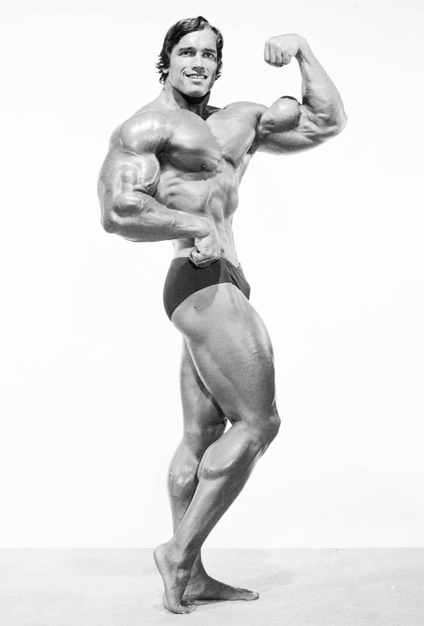Arnold-Schwarzenegger-1r4.jpg