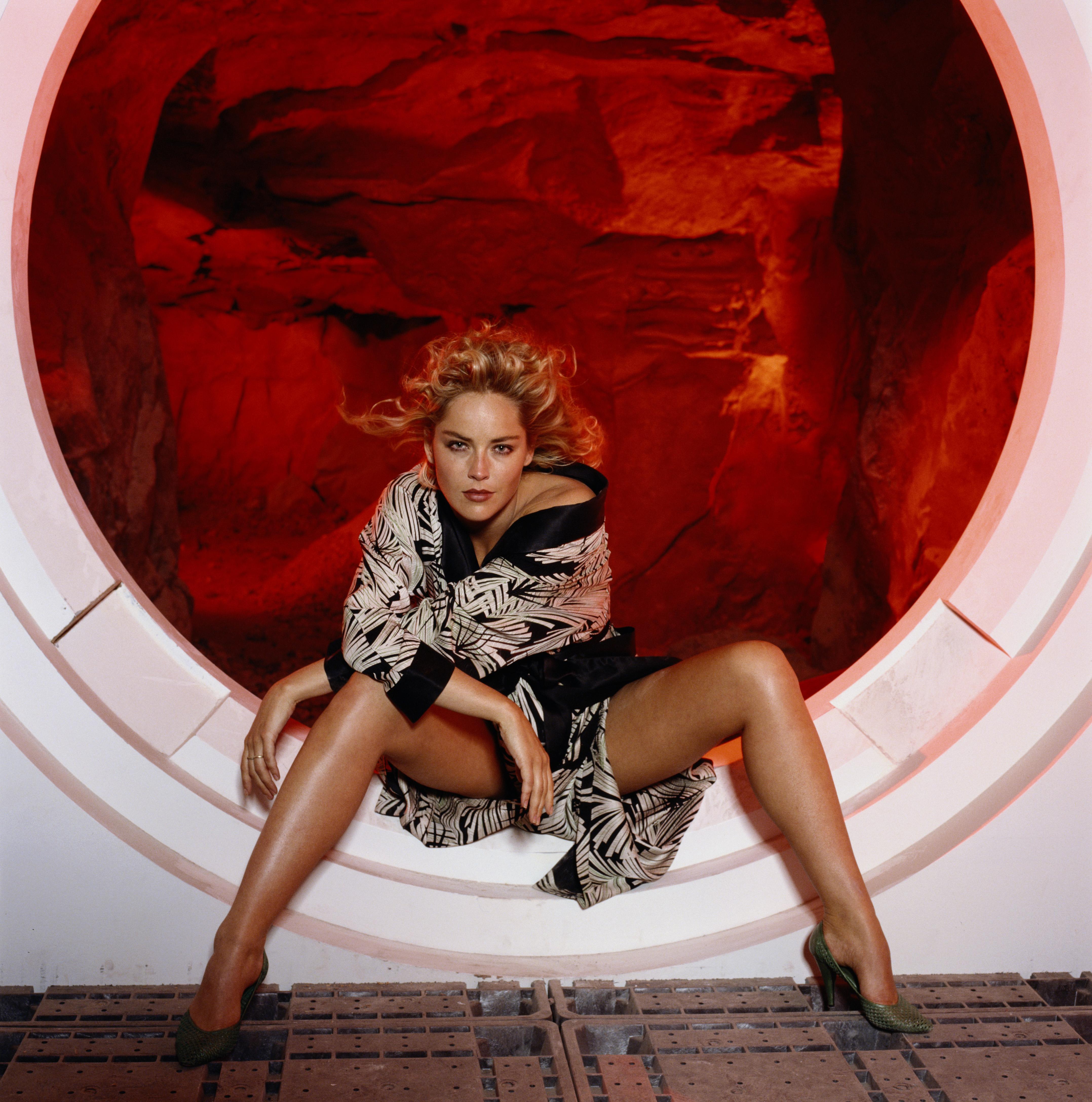 Sharon Stone2.jpg