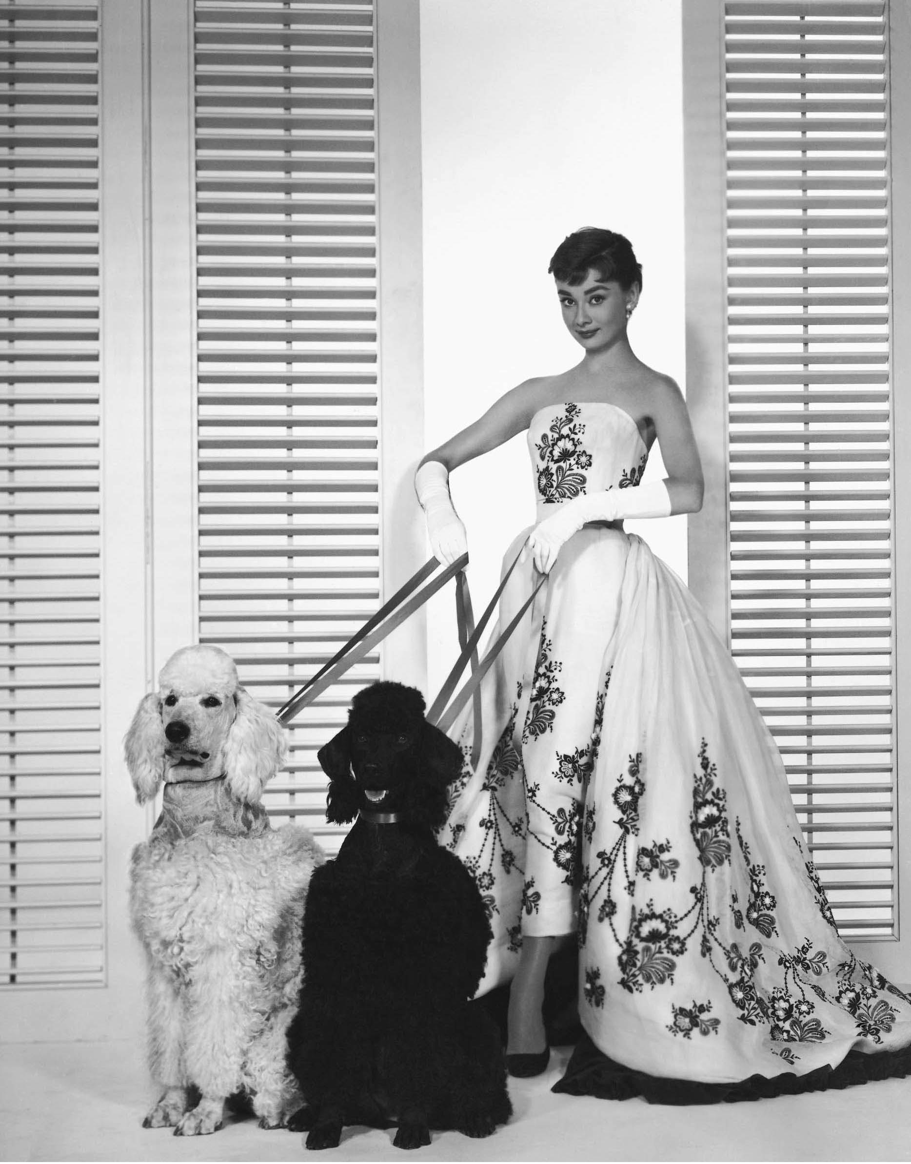 audrey-hepburn-as-sabrina-fairchild-in-the-1954.jpg