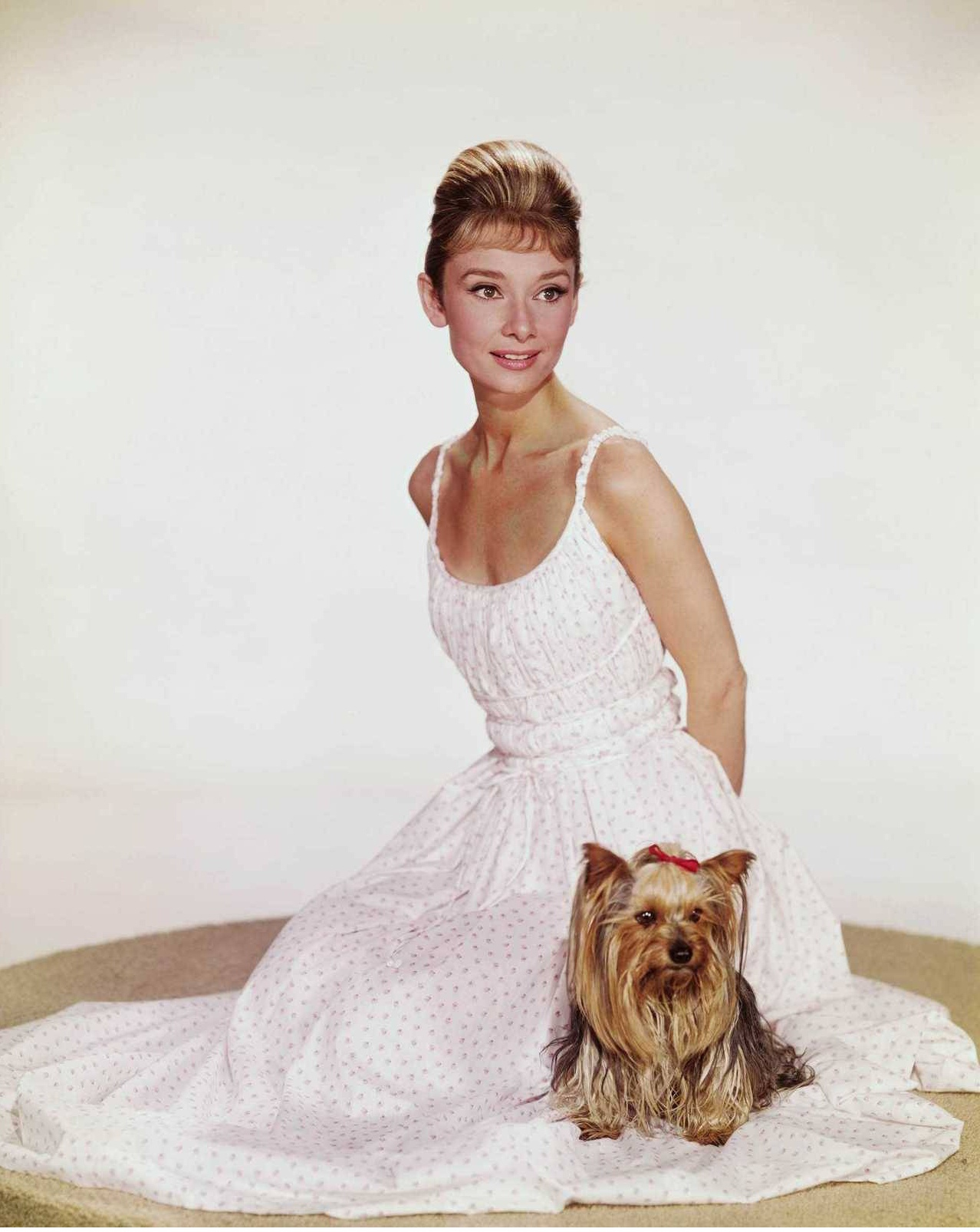 audrey-hepburn-photographed-with-mr-famous-her-yorkshire-terrier-c2a9-bud-fraker.jpg