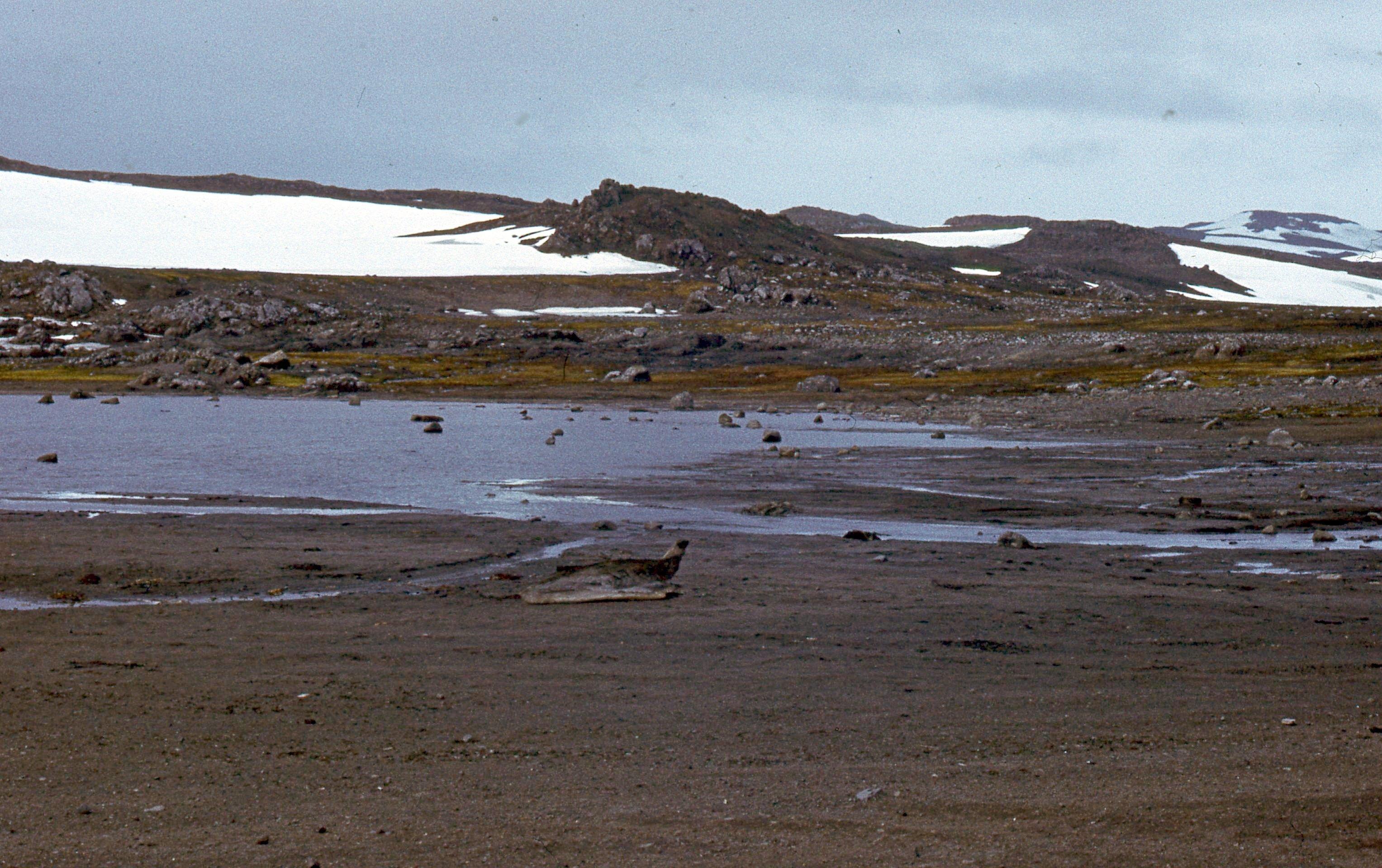 829622 Антарктическая станция _Молодёжная_.jpg