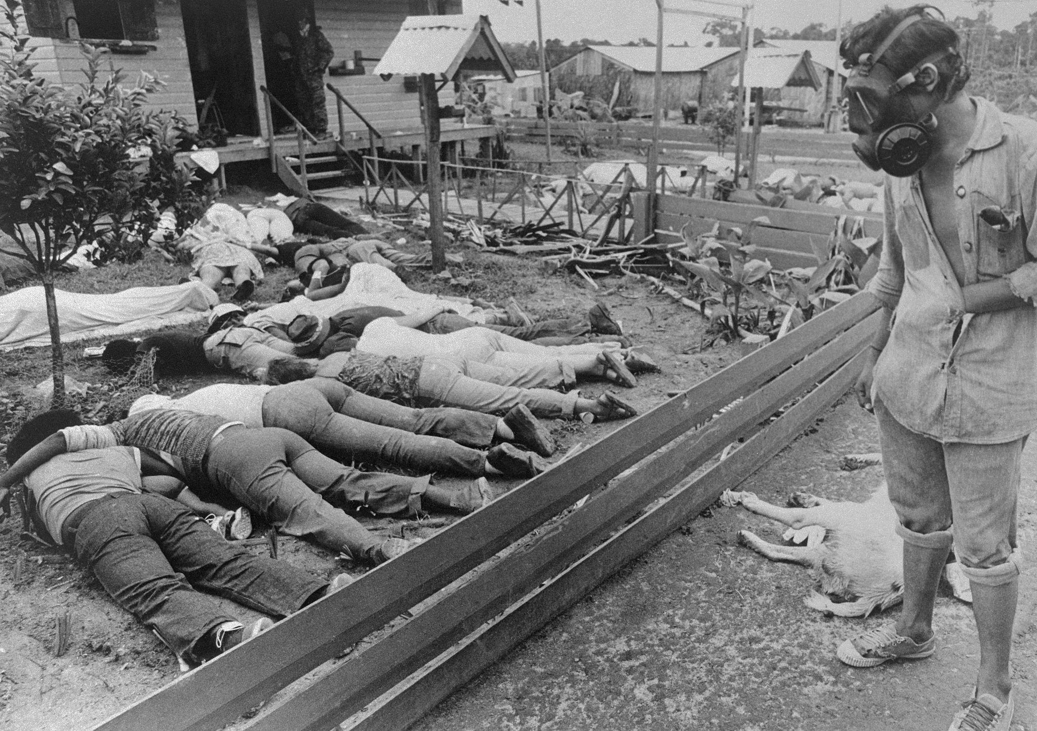 Один из членов группы, отправленный в Джонстаун правительством Гайаны, осматривает некоторые из сотен тел последователей Народного храма, которые пог…