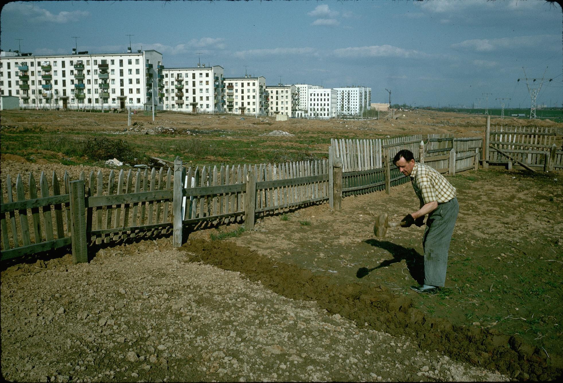Огород на окраине Москвы. 1964.jpg