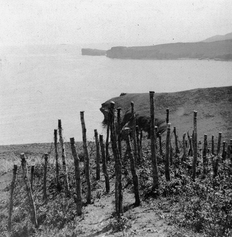 Заграждение из колючей проволоки на склоне над м. Шмидта. Вид на б. Карпинского и п-ов Тобизина. 1905