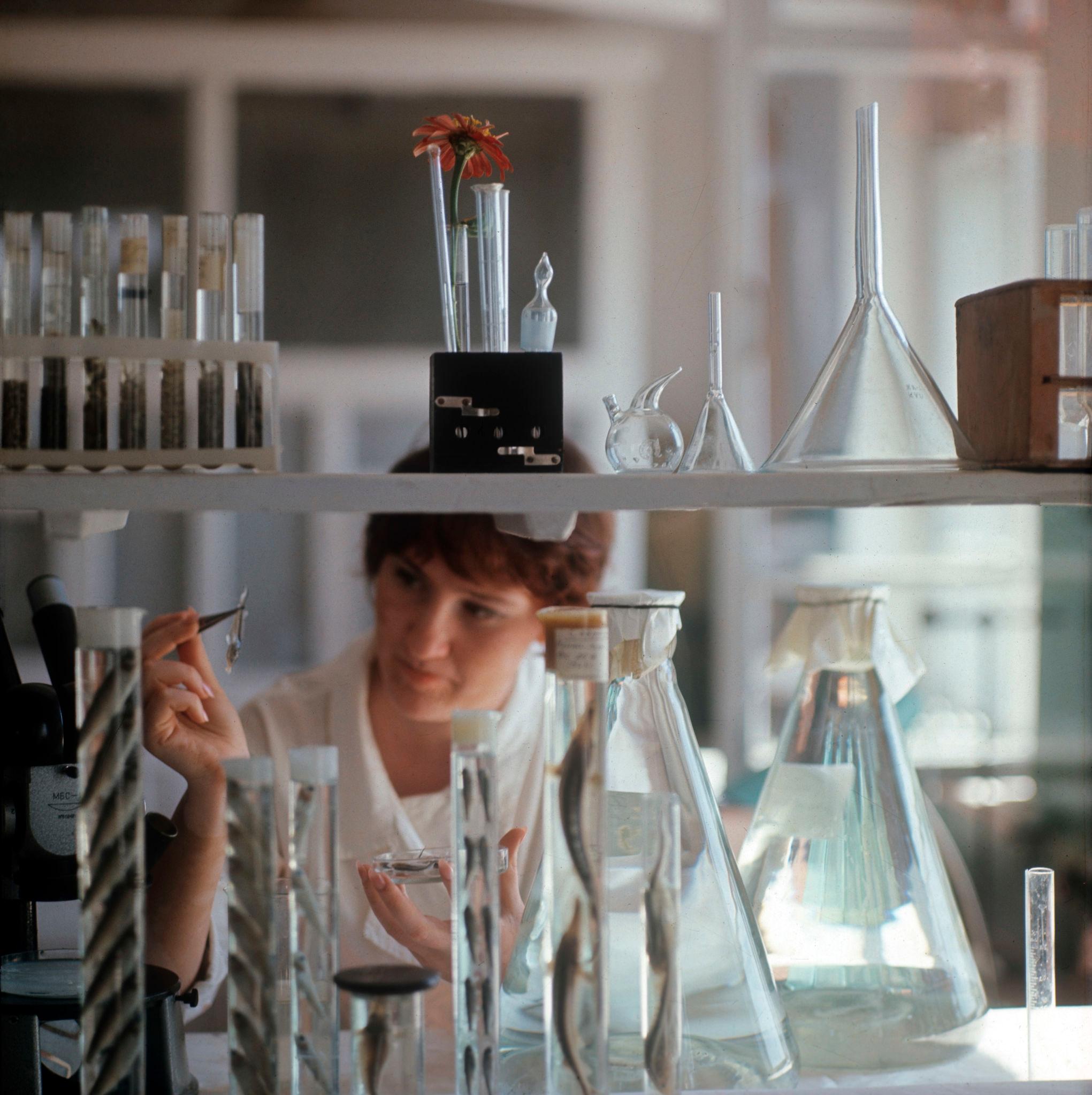 В ихтиологической лаборатории рыборазводного завода