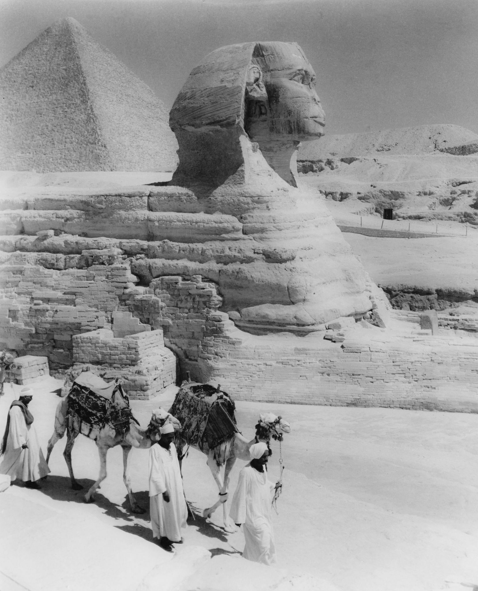 1955. Караван верблюдов, проходящий мимо Великого Сфинкса в Гизе, с Пирамидой Хеопса на заднем плане