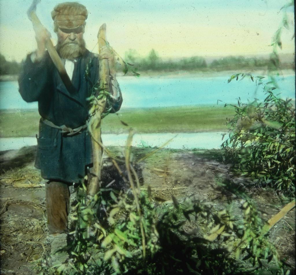 Крестьянин очищает от листвы большую ветку