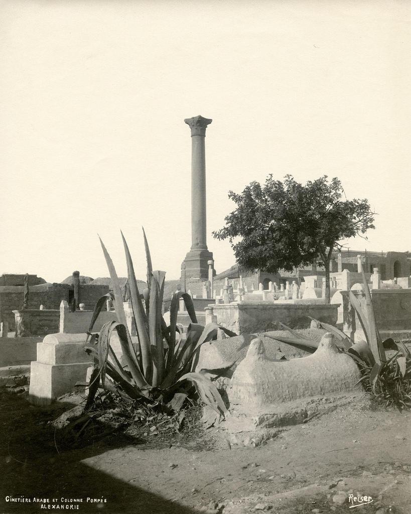 1890. Александрия. Арабское кладбище и Колонна Помпея