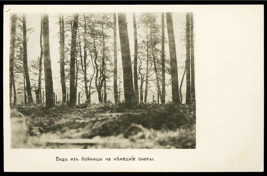 Вид из бойницы на немецкие окопы