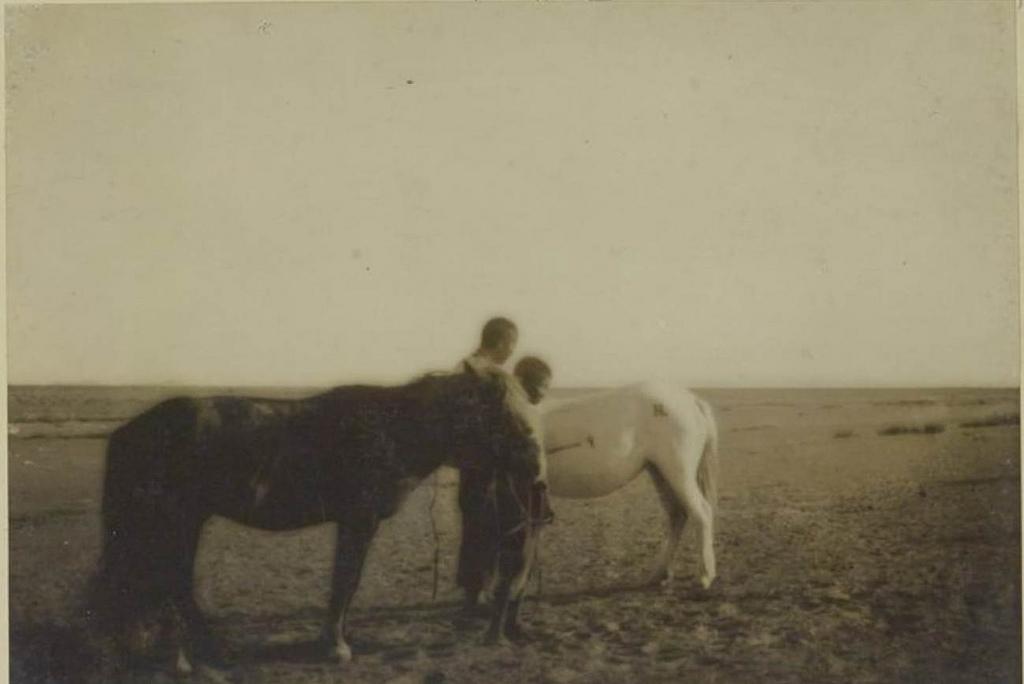 Клеймение лошадей раскаленным железом, 15 сентября;