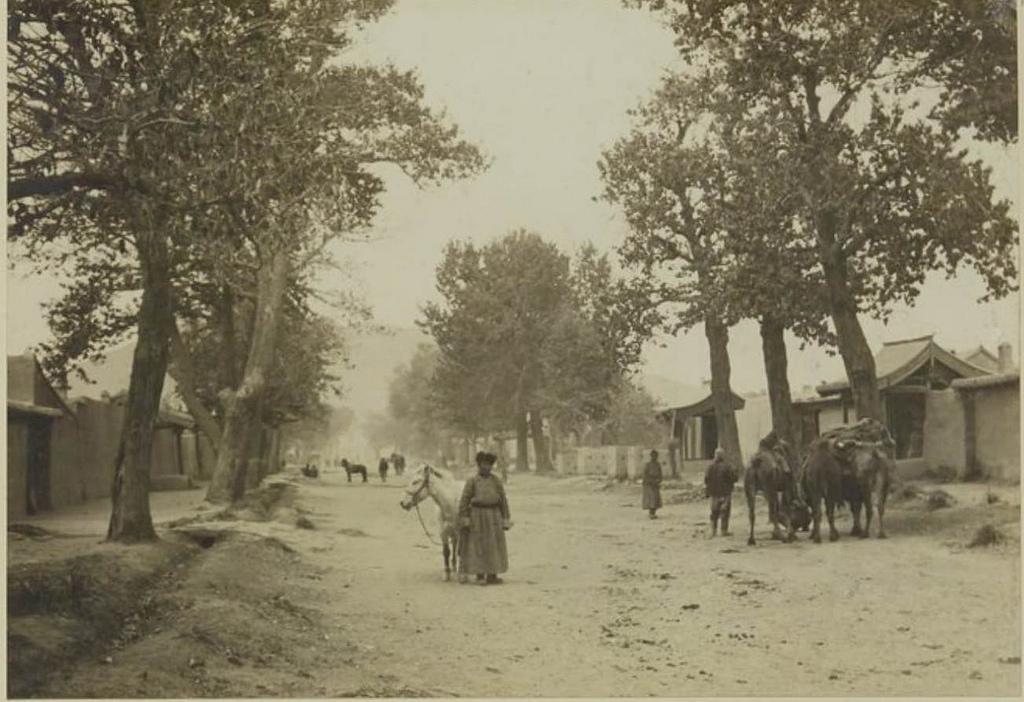 Улица Кобдо с ее большими тополями, 25 сентября
