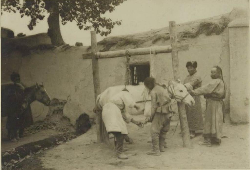 Кобдо. Наша кавалерия у кузнеца, 26 сентября